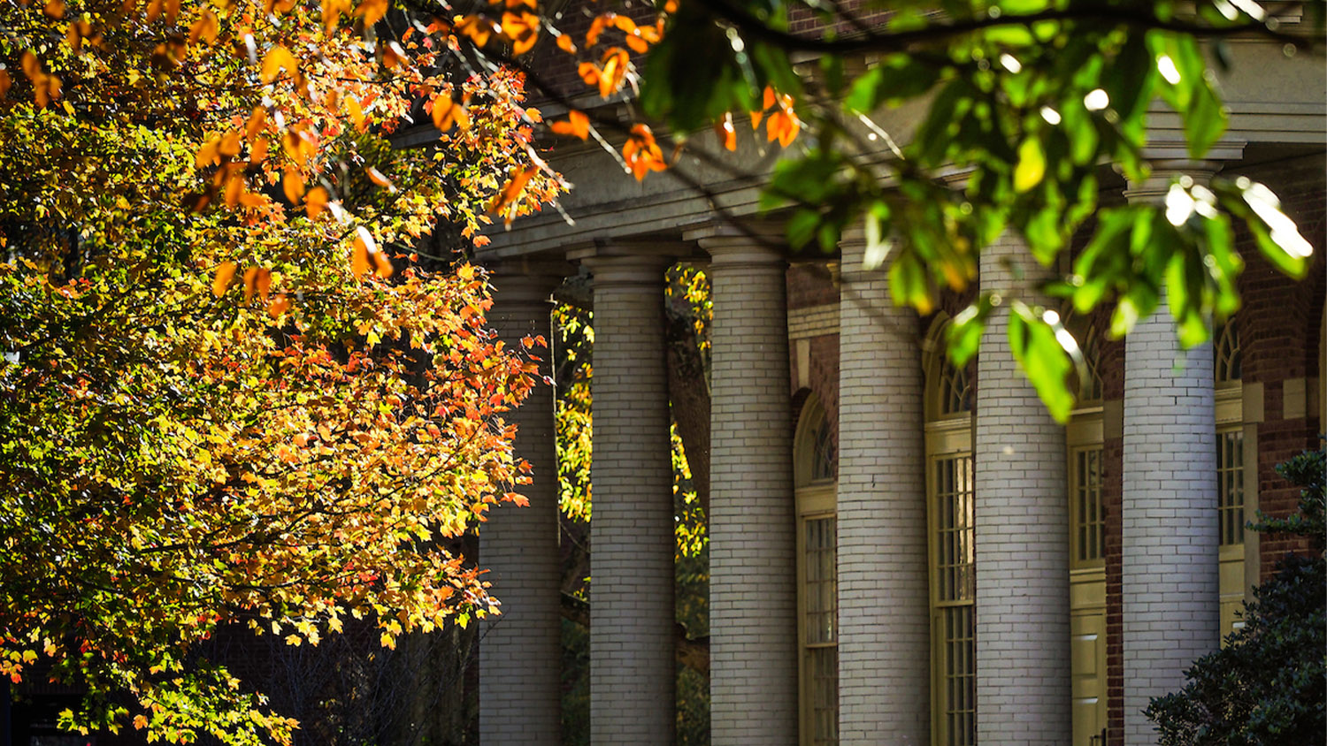 The columns of Leazar hall are framed by the fall color of trees on main campus. Photo by Marc Hall