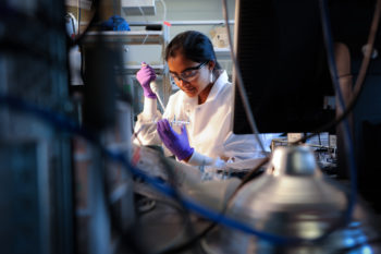 Biomedical engineering PH.D. graduate student Vindhya Kunduru in a biomedical engineering lab at EBIII. When Vindhya Kunduru moved to Raleigh, she had no idea she was going to become an expert on Salmonella, bacterial infections and chickens. Now she's hoping to build a career on them. Photo by Marc Hall