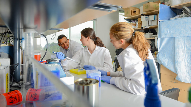 Gupta works with fellow research students and mentors in an NC State lab.